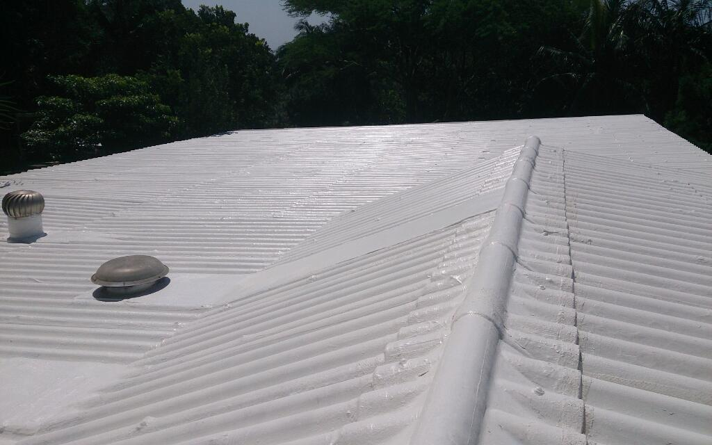 Asbestos waterproofing specialists